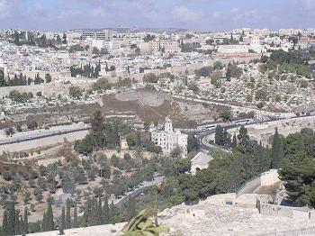 Shabbat Shoftim – Judges – Sabbath Readings and video commentary