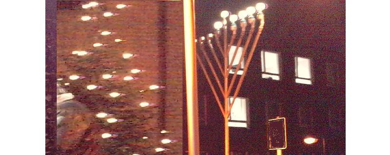 Hanukkah and Nittel Nacht Shabbat 5772 Miketz